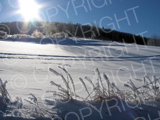 Mittelgebirge Sauerland im Winter